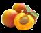 meruňky