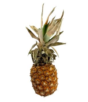 Ananas 1ks