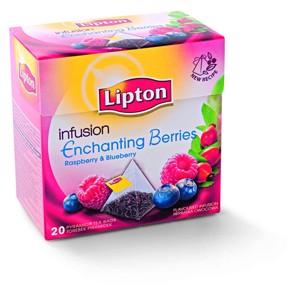 Lipton čaj ovocný pyramidový 20 sáčků, vybrané druhy