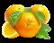 mandarinky logo