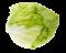 okurky a saláty